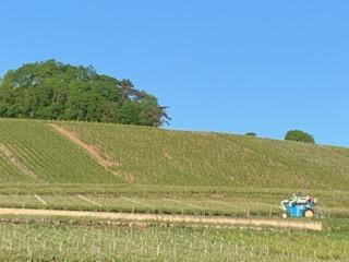 Aire camping-car à Ville-Dommange (51390) - Photo 7